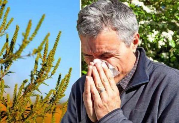【花粉症でもゴルフがしたい】どうすれば良い花粉症対策